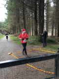 Photo of Christmas Turkey Trail Run (Djouce Djog)