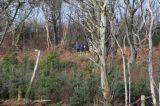 Photo of Clonakilty Trail