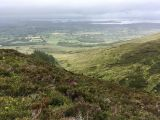 Photo of Nephin