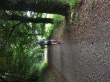 Photo of Warrenscourt Forest (Kilmurry)
