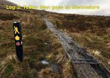 Photo of Glendalough Clover (Relay)