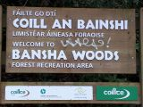 Photo of Bansha Woods