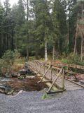Photo of Glengarra Woods