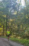 Photo of Garryduff Woods, Rochestown